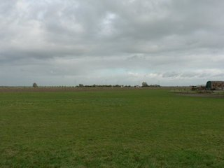 #1: View to the North - The DCP lies about 16 meters inside the meadow