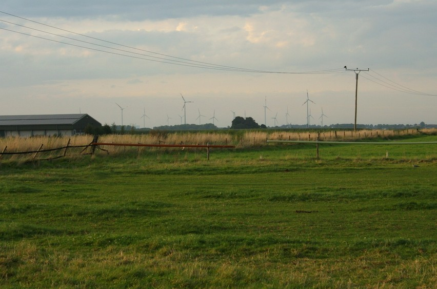 View to the North-West (wind mills)