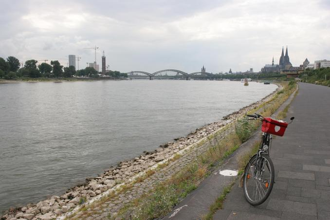cycling along the river Rhein in Cologne