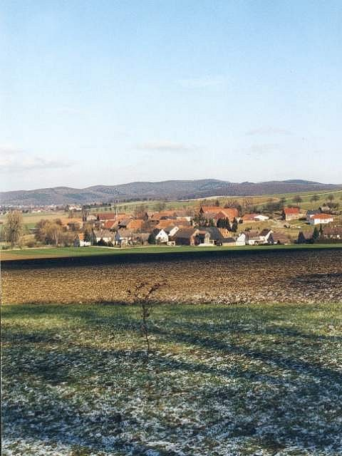 The Ceremonial Confluence Tree marks the spot, view to the northeast, the small village of Evensen is in the background