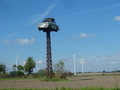#8: The Trabant cum stork nest