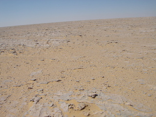 #1: General view of the point showing the roughness of the terrain
