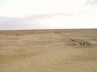 #1: Looking at 30N 27E from the edge of the sabkha 200 m away.