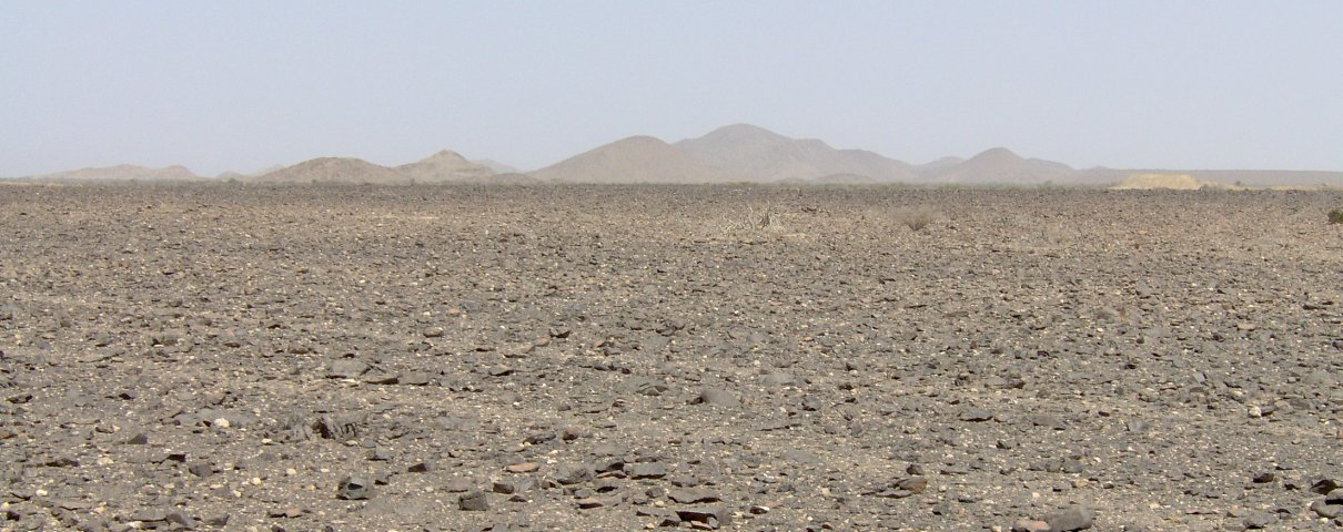 Tracks in the plain