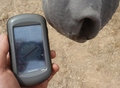#6: GPS Reading with Horse