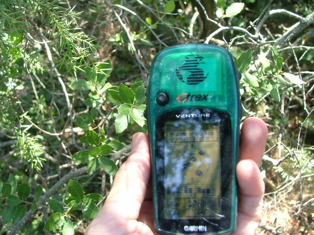 GPS (Bajo los Pinos-  Under branches of Pine trees)