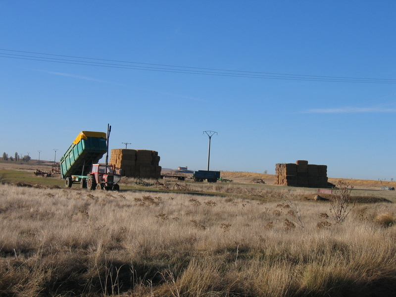 Farming near the Confluence