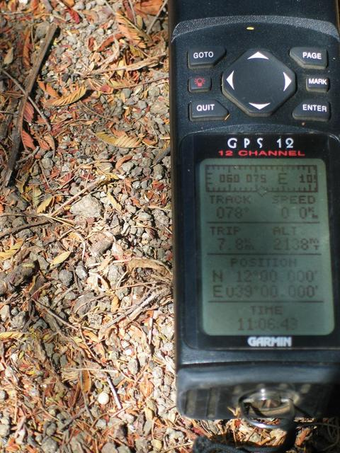 GPS under the acacia showing the marks of success!