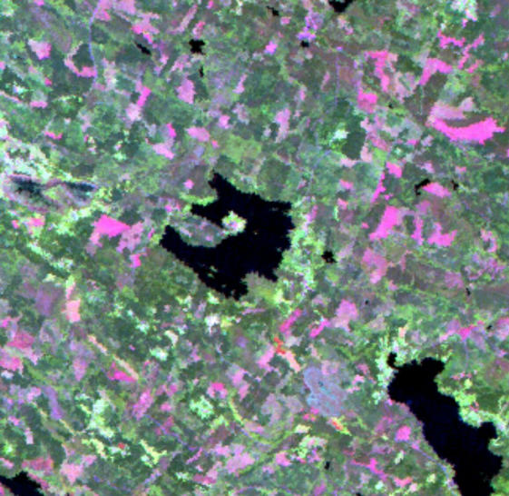 Satellite image of the lake, courtesy of Marcus.
