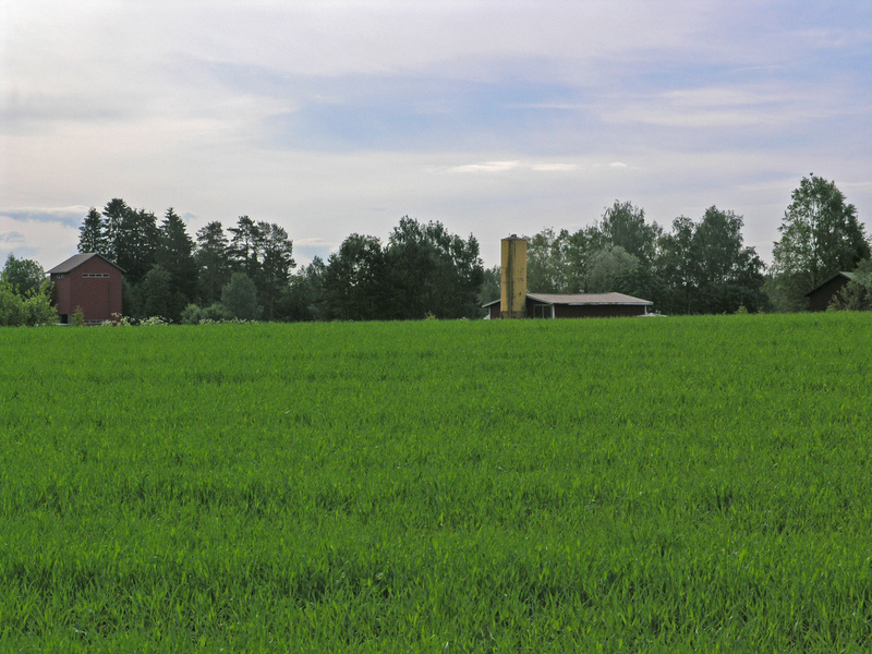 The closest farm buildings, seen from the point