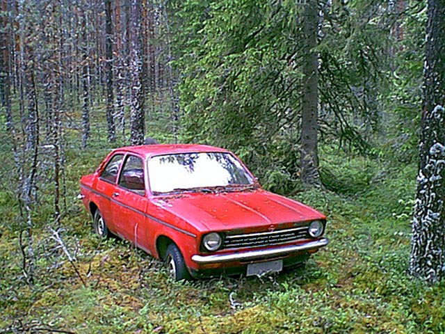 The old car hiding in middle of the forest.