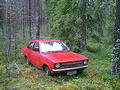 #6: The old car hiding in middle of the forest.
