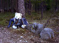 #4: The bear, greeting all visitors
