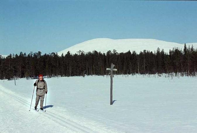 Ulla-Maija Harju on the skiing route from Pallas to Olos about 2 kilometers distance from the confluence.  At background peaks of Pallas-tunturi, 500m above.