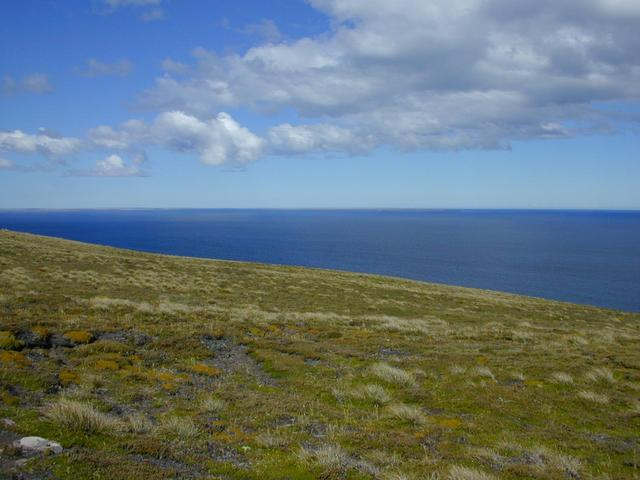 How the confluence looks: a gentle mossy, grassy slope with the South Atlantic as a backdrop.  In the distance to the southeast Lafonia (East Falkland)