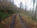 #9: Track near the confluence