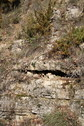 #8: Limestone fissures, 60 metres from the CP
