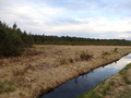 #9: The Confluence from 100 m distance