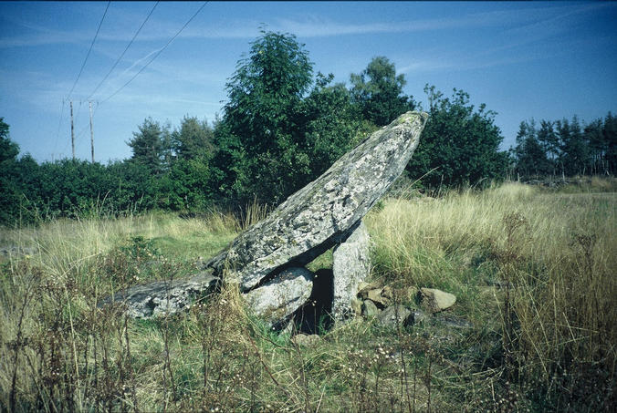 'Grand Dolmen de la Table au Loup' (at 44° 59.225' N 3° 0.594' E, altitude 1018 m) not far away from the confluence point