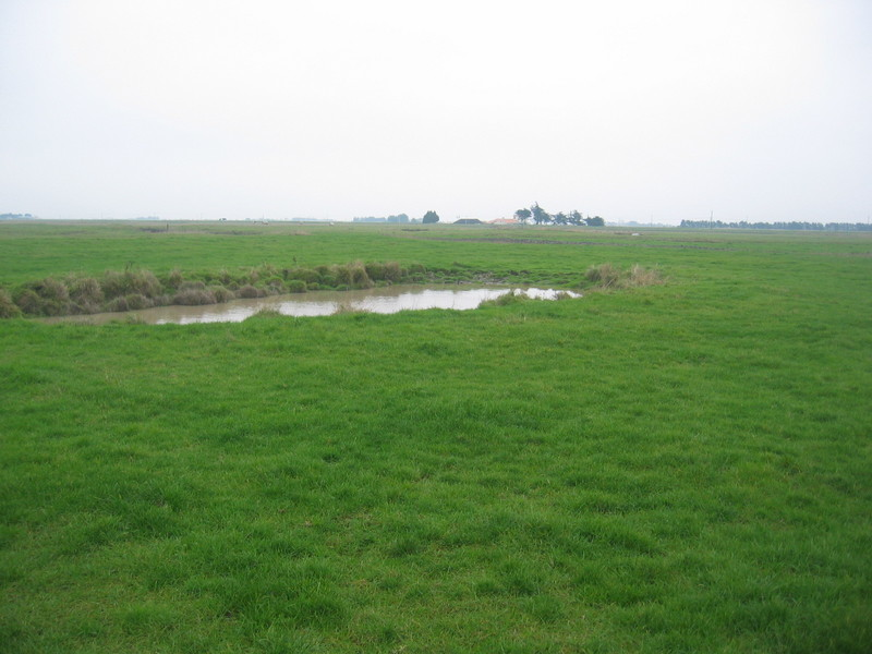 The Confluence from 20 m
