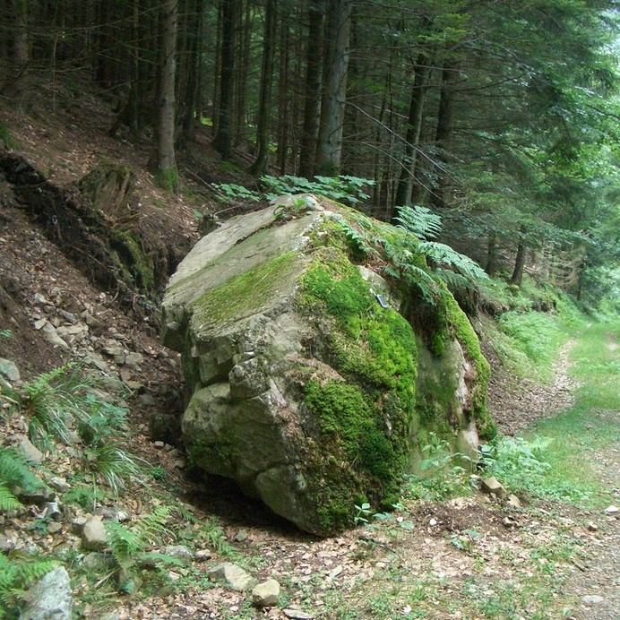 The confluence of 48° North and 7° East marked by a boulder?