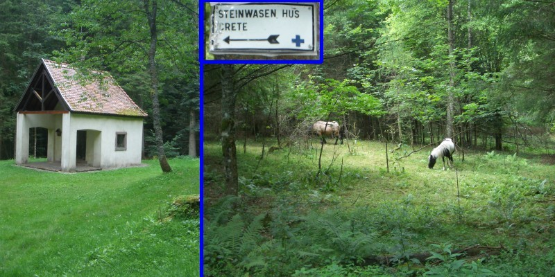 Pass the chapel, turn left at the horses to follow the Steinwasen sign