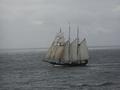 "#5: The Dutch schooner ""Oosterschelde"""