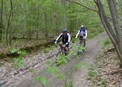 #8: Mountain biking in the forest