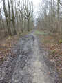 #10: The muddy path near the Confluence