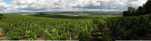 #1: PANORAMIC NW VIEW AT 72 MTS FROM CP. VINEYARDS FOR CHAMPAGNE