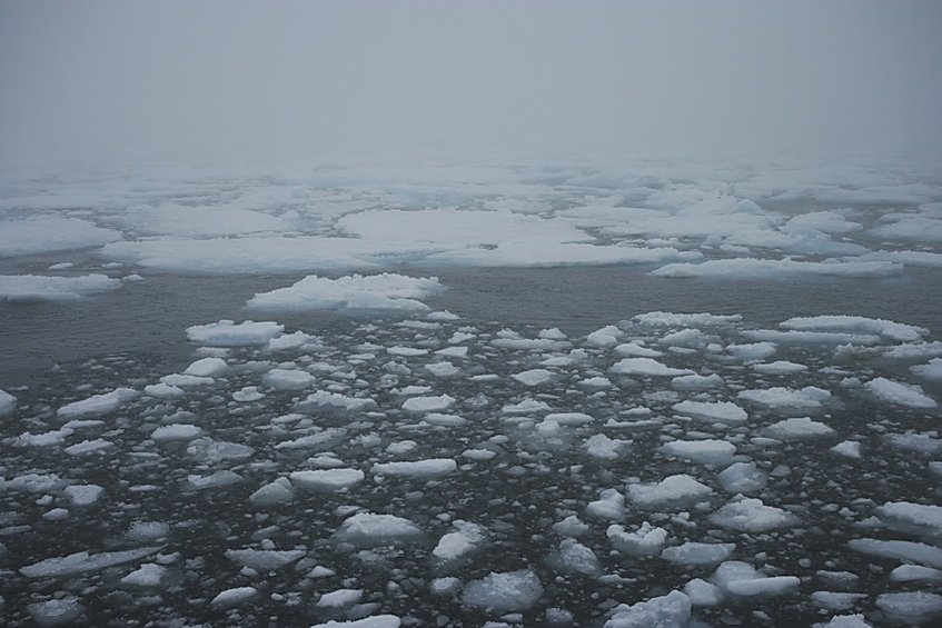 Pack ice edge 50 km WSW of confluence