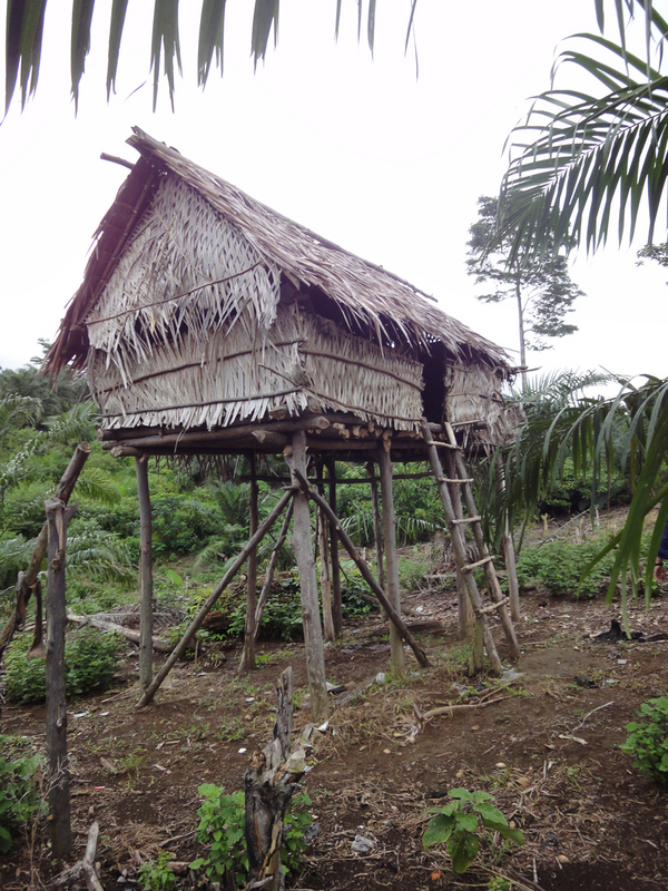 traditional hut in the hills above the confluence
