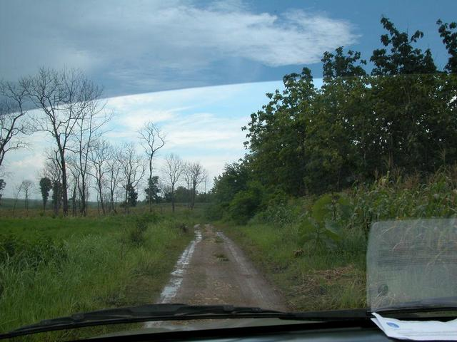 The dirt road towards the confluence point