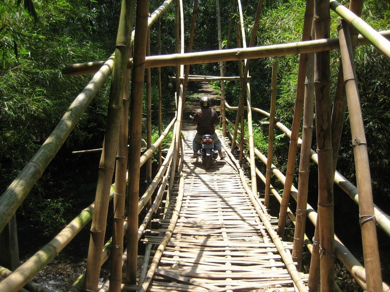 A Stable Bamboo Bridge