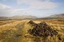 #6: Peat cutting