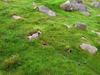 #1: The confluence point: A steep, rock-strewn hillside (and sheep farm)