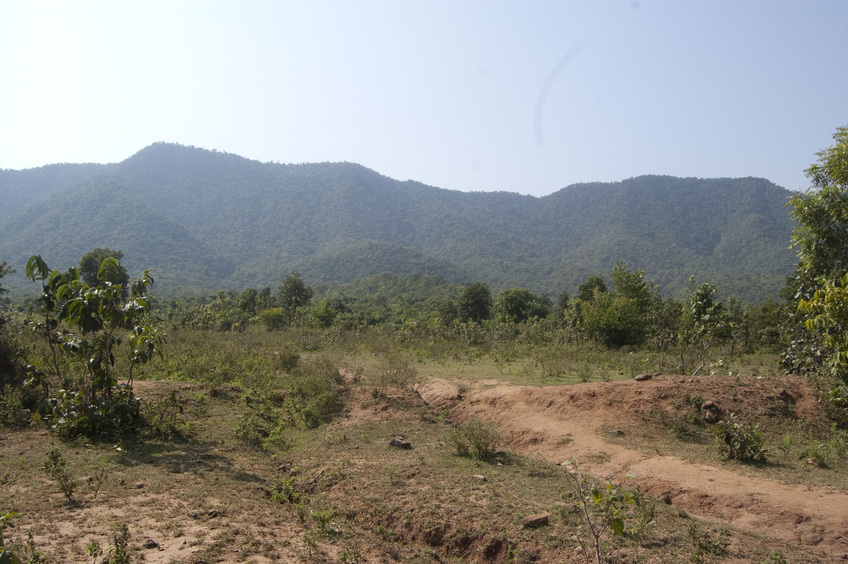 View of the CP hills