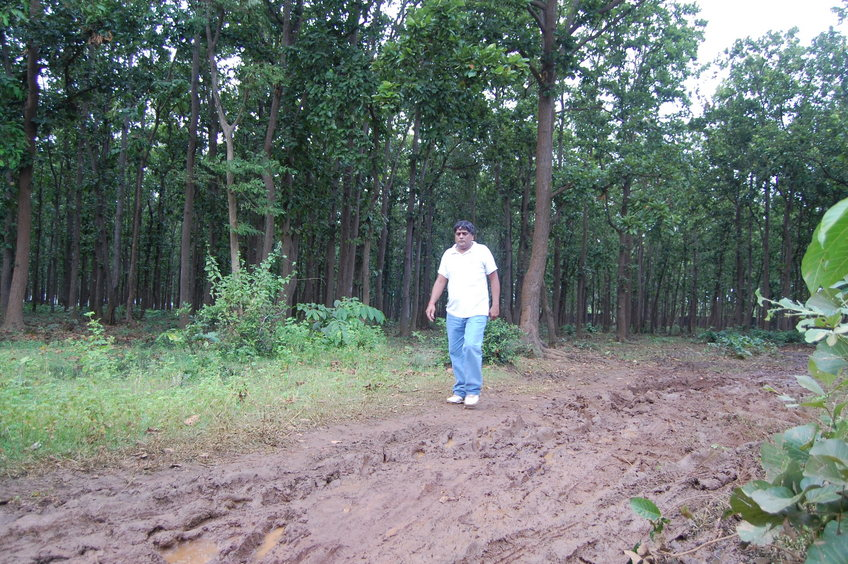 Anil  Dhir  emerging  from  the  woods