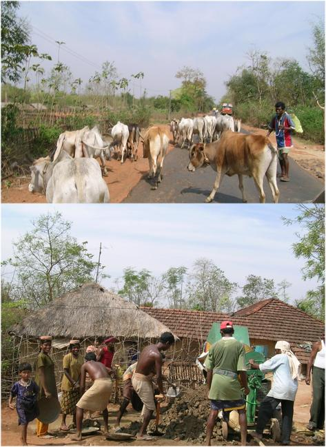 Village scenes while heading towards the CP