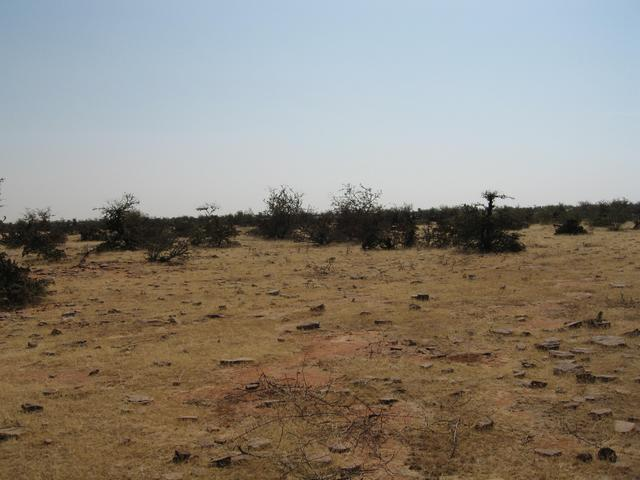 The barren land that surrounds 25N, 76E