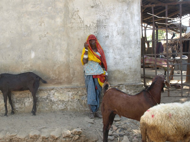 Confluence's Nearest Neighbor: A Woman & Her Goats