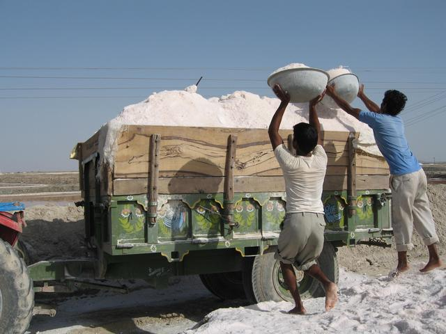 Salt workers load up a truck