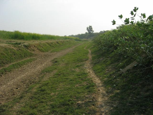 Path leading up to the confluence