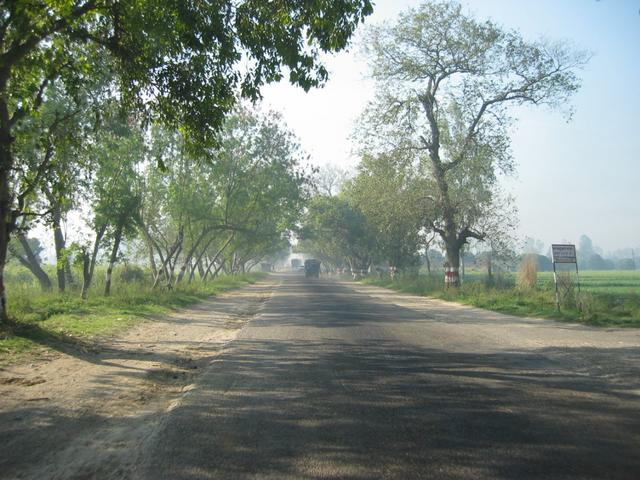 The road from Hapur to Aligarh -- tree-lined boulevard of potholes