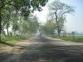 #5: The road from Hapur to Aligarh -- tree-lined boulevard of potholes