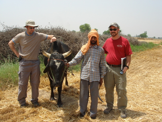 Doug and Sam pose with a wheat farmer and his horse, within 100m of the confluence