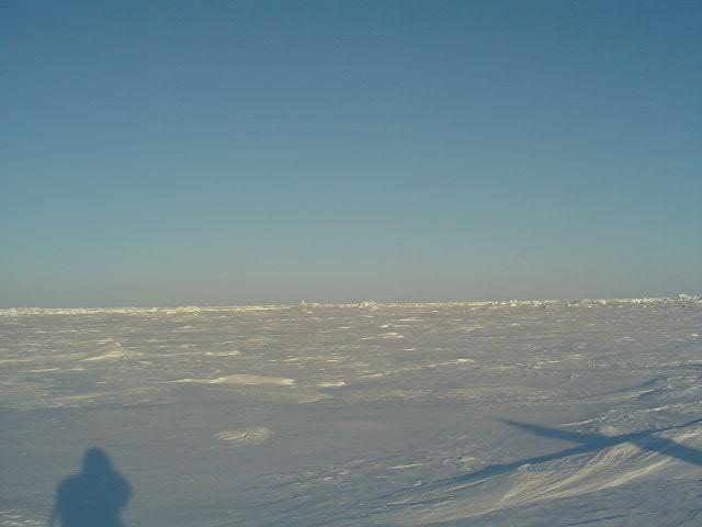 Looking south from the pole