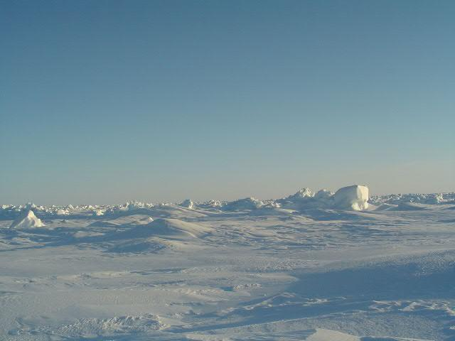 Looking south from the pole again