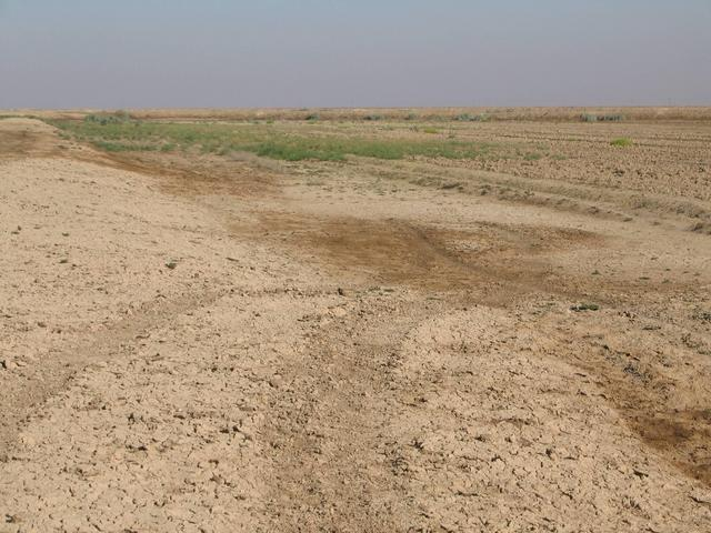 The area of the Confluence