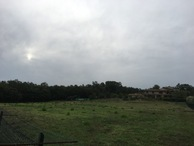 #9: The nearby farm and neighbouring meadow from 80 m distance